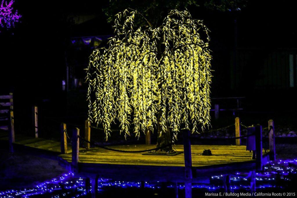 LED TREEE
