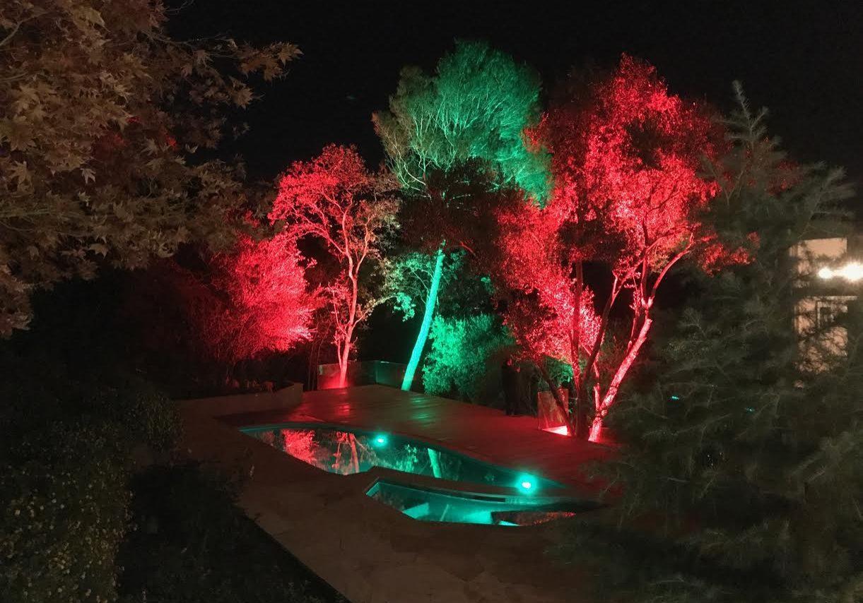 uplit trees